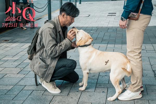 《小Q》发终极预告海报 人犬情未了引爆新型合家欢